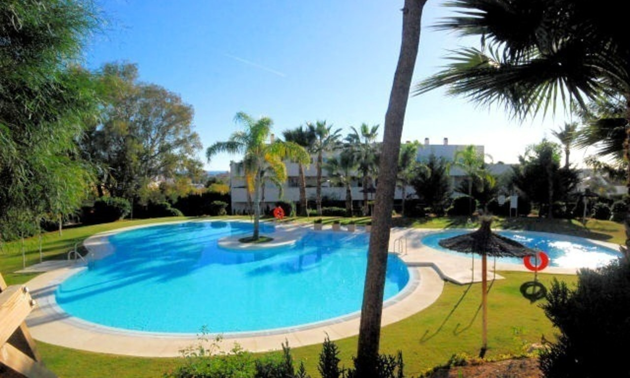 Bargain 3 bedroom apartment for sale in Nueva Andalucia - Marbella 2