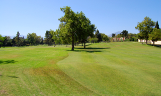 Frontline beach and front line golf villa for sale in Marbella 5