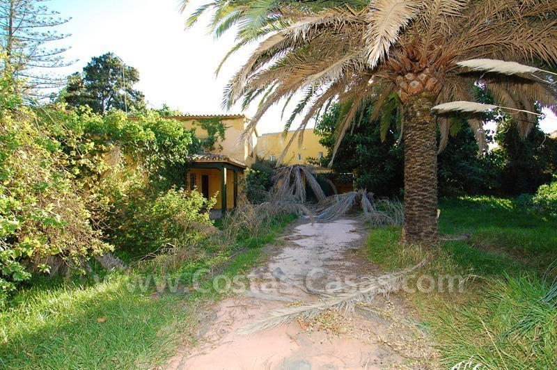 Bargain plot with detached villa to renovated for sale near the beach in San Pedro – Marbella 3