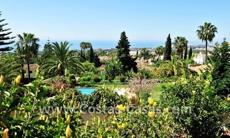 Bargain luxury villa for sale in Sierra Blanca, Marbella 13