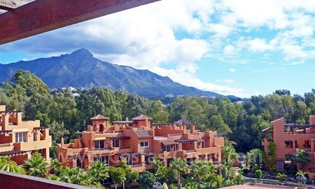 Bargain new apartments and penthouses for sale in Marbella – Nueva Andalucía. 12
