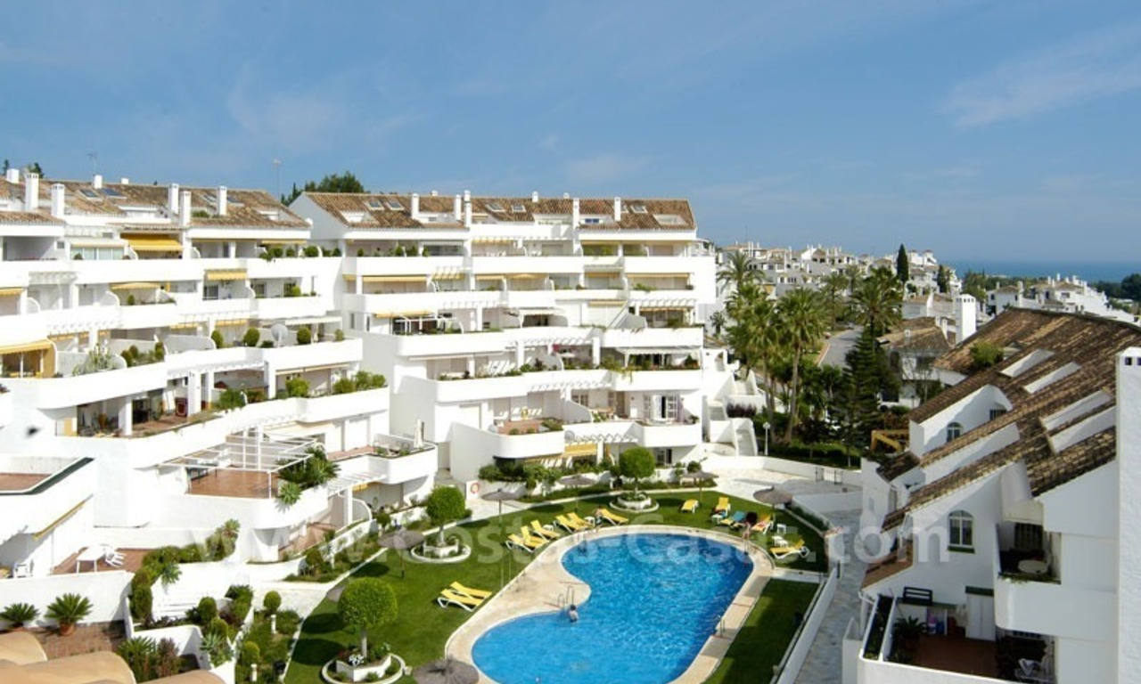 Bargain penthouse apartment for sale in Nueva Andalucía, Marbella 5