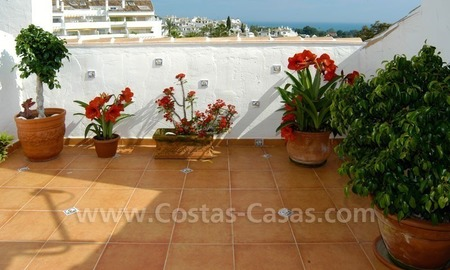 Bargain penthouse apartment for sale in Nueva Andalucía, Marbella 4