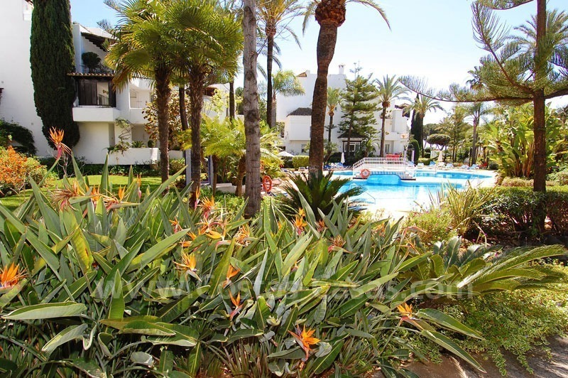 Spacious apartment for sale on the beachfront complex in Marbella on the Golden Mile 17