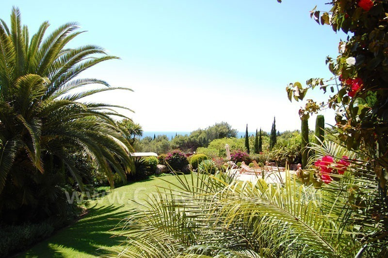 Luxury classical style villa to buy in Sierra Blanca, Marbella 9