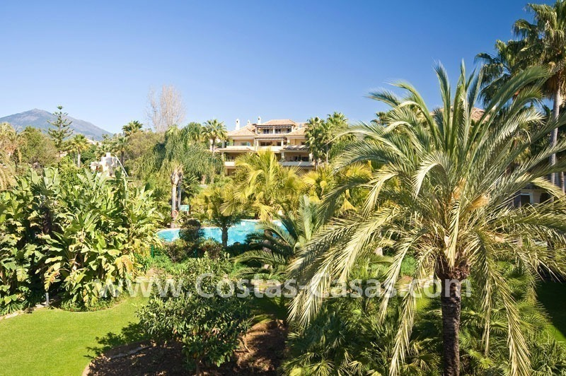 Exclusive penthouse apartment for sale in Nueva Andalucia - Marbella 4