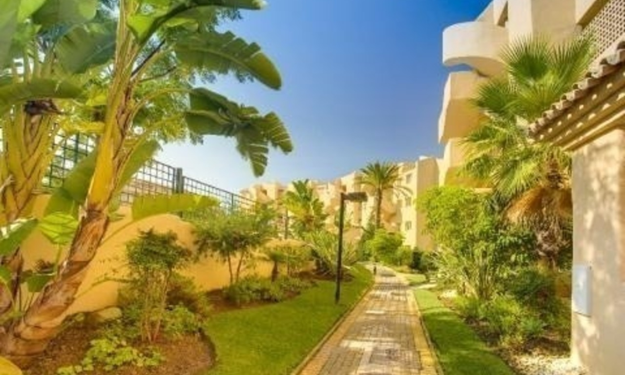 Bargain new apartments to buy in Marbella east 14