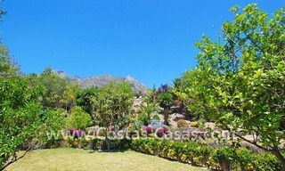 Majestic luxury villa for Sale in Camojan, Marbella 5