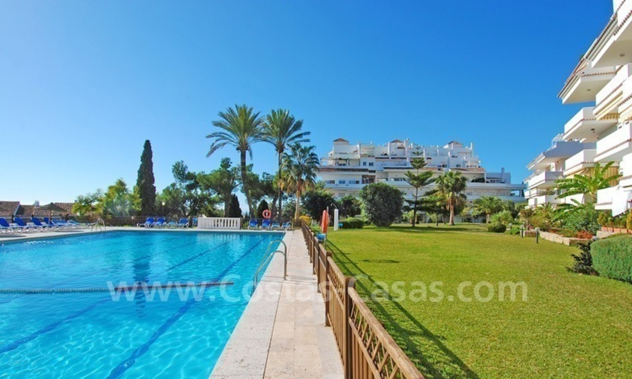 Ample ground floor apartment for sale in Nueva Andalucia – Marbella 1