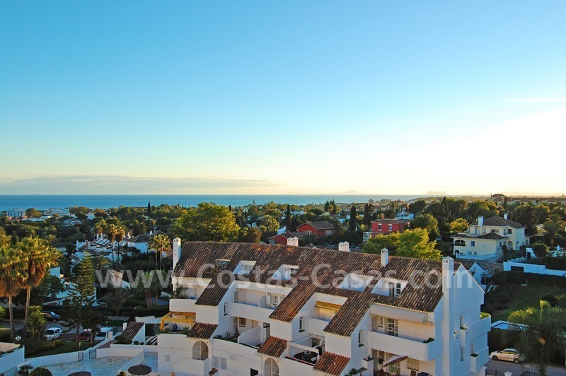 Bargain penthouse apartment for sale in Nueva Andalucia, Marbella 1