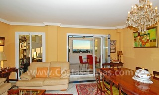 Bargain penthouse apartment for sale in Nueva Andalucia, Marbella 3