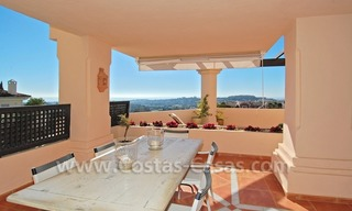 Large luxury elevated ground-floor apartment for sale in Nueva Andalucía – Marbella 3