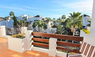 Spacious Beachfront Penthouse for Sale on the New Golden Mile, Estepona 14