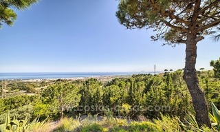 Finca - Villa for sale in Estepona with panoramic sea view 2