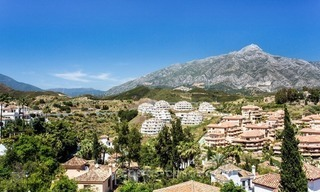Luxury penthouse apartment for sale in Nueva Andalucia – Marbella 3
