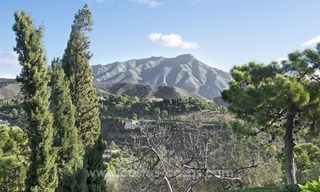 Classical country style villa for sale in El Madroñal, Benahavis - Marbella 4