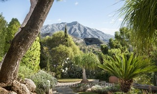 Classical country style villa for sale in El Madroñal, Benahavis - Marbella 15
