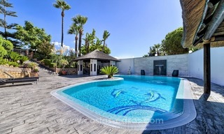 Luxury villa for sale in Nueva Andalucia - Marbella 1