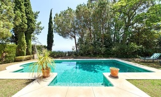 Renovated charming villa for sale in Hacienda Las Chapas – Marbella 9