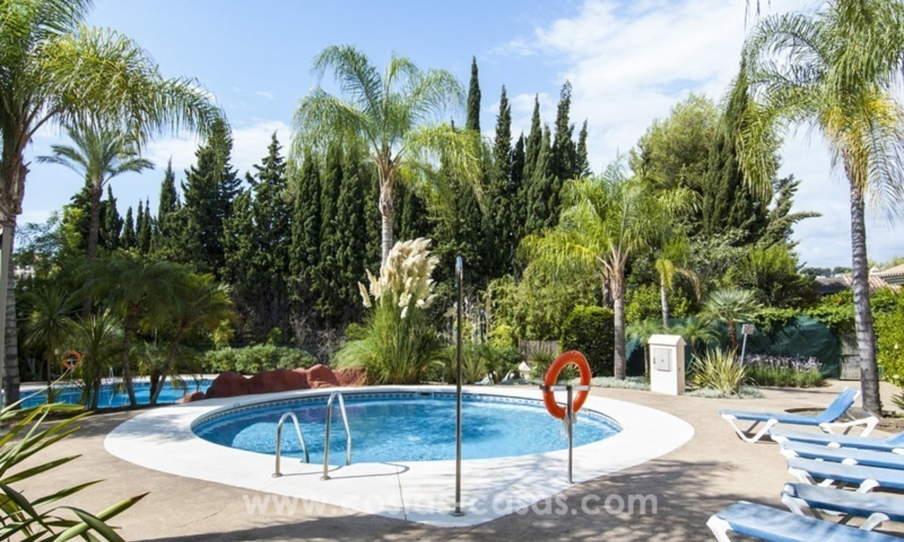 Bargain apartment for sale in Nueva Andalucia, walking distance of all amenities and Puerto Banus in Marbella 1