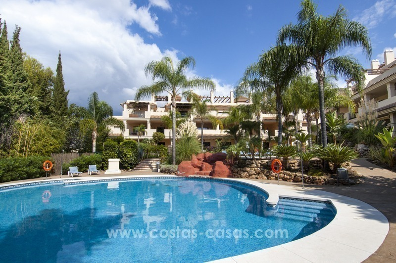 Bargain apartment for sale in Nueva Andalucia, walking distance of all amenities and Puerto Banus in Marbella