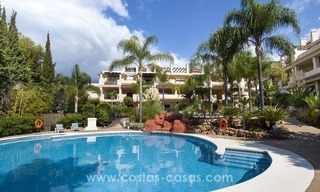 Bargain apartment for sale in Nueva Andalucia, walking distance of all amenities and Puerto Banus in Marbella 0
