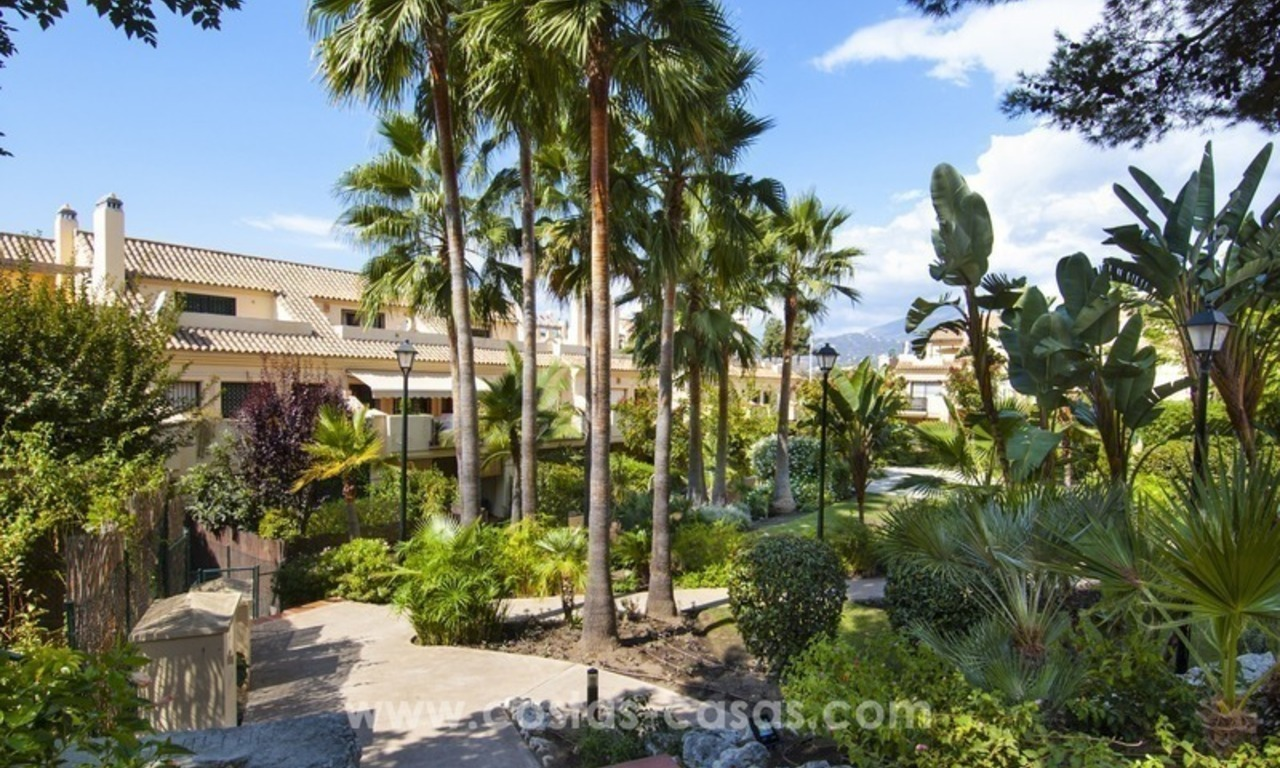 Bargain apartment for sale in Nueva Andalucia, walking distance of all amenities and Puerto Banus in Marbella 13