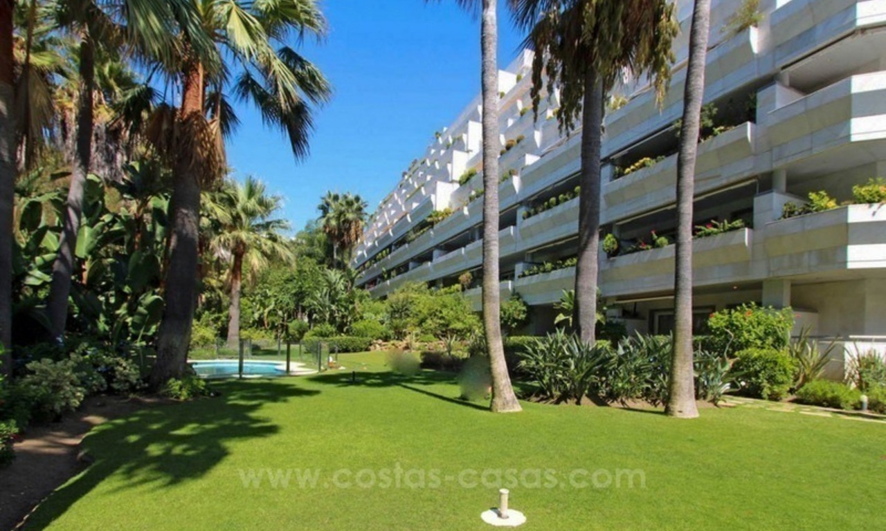 Opportunity: For Sale in Gran Marbella: Fantastic apartment frontline beach 1