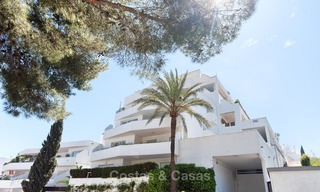 Cosy and bright apartment for sale, recently renovated, Nueva Andalucía, Marbella 6030