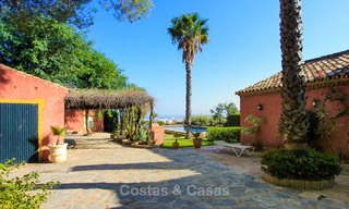Well located and attractively priced villa - finca with sea and mountain views for sale, Estepona, Costa del Sol 8704
