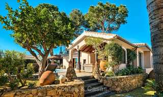 Cosy and luxurious traditional-style villa with sea views for sale, with guest house, ready to move in - Elviria, Marbella 8812
