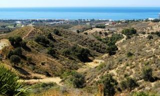 Building Plots for Sale on the Slopes of the Los Altos de Los Monteros Hills 2